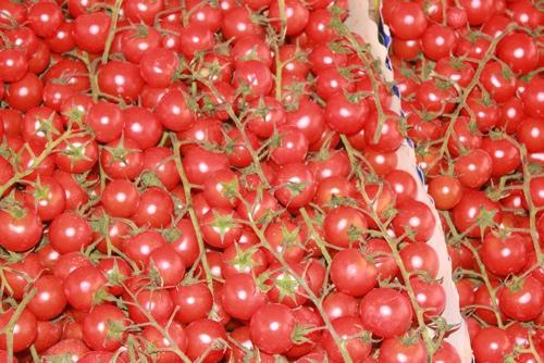 Pachino Tomatoes, Sicily