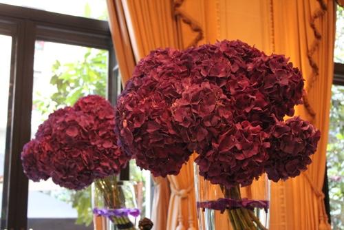 Hydrangeas at the George V in Paris