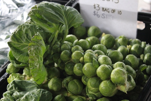 Brussel sprouts on the stalk at the Abbotsford Convent Market in Melbourne