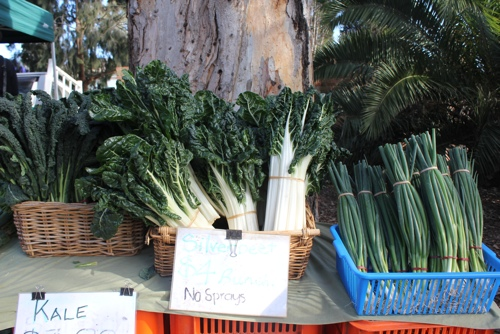 Organic Vegetable stall at the Abbotsford Market in Melbourne