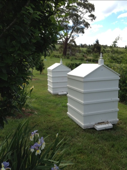 Beehives at Paul Bangay's Garden, Stonefields