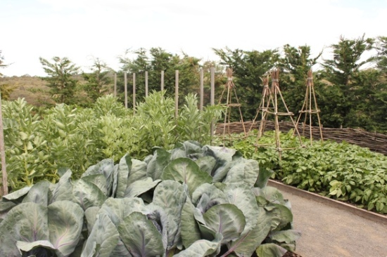 Vegetable Garden at Paul Bangay's Garden, Stonefields