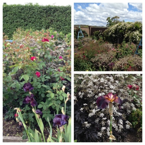Paul Bangay's Garden, Stonefields