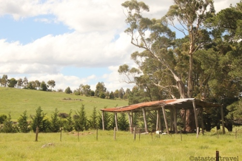 The Aussie Countryside